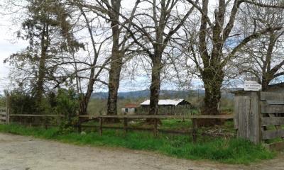 CentroCasas.cl Venta de Campo en Valdivia, salida sur