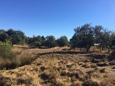 Venta de Terreno  en La Unión, sector Riquelme, Valor $ 950 MLLS